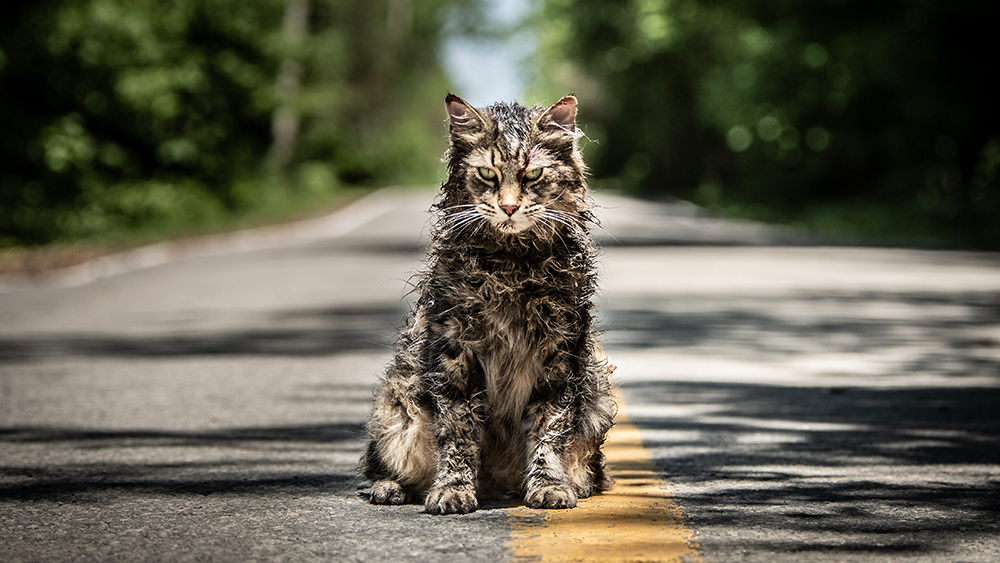 pet sematary (2019) review cultural hater
