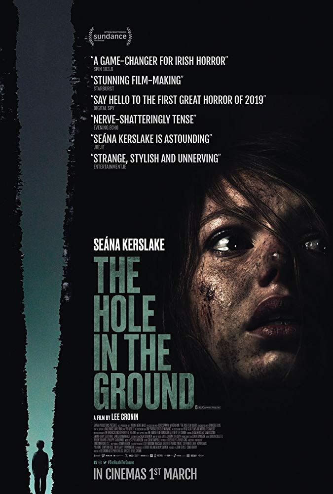 Poster of horror movie The Hole In The Ground (2019)