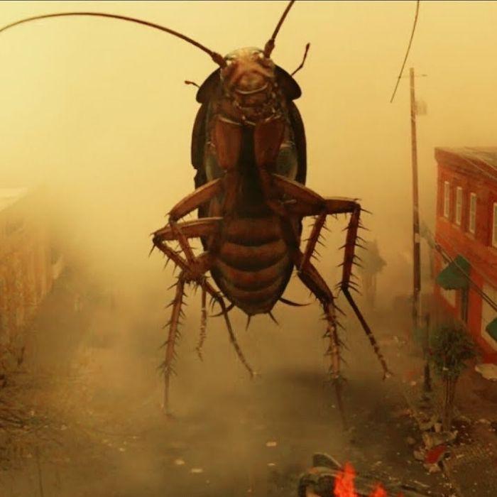 Ezekiel the giant cockroach - doom patrol by hobo