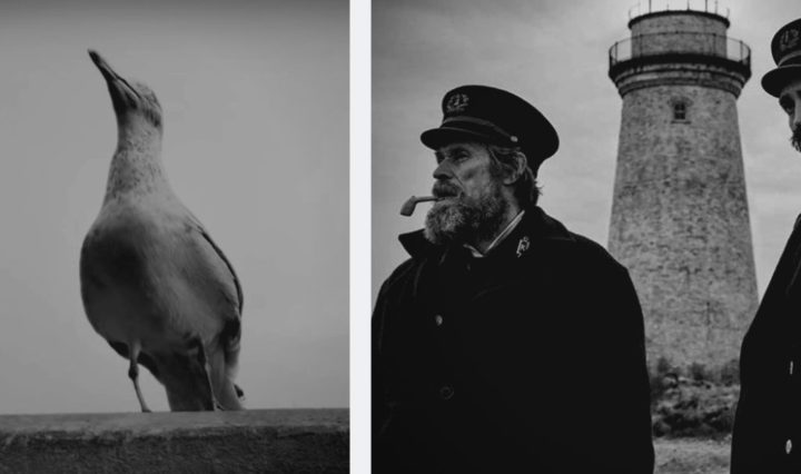the-lighthouse-cultural-hater-image