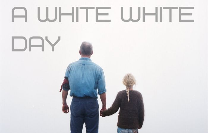 best-movie-of-2019-a-white-white-day-icelandic-indie-drama