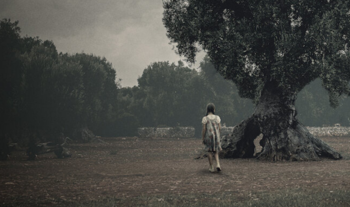 beautiful cinematography of the binding 2020 - Italian horror movie on Netflix