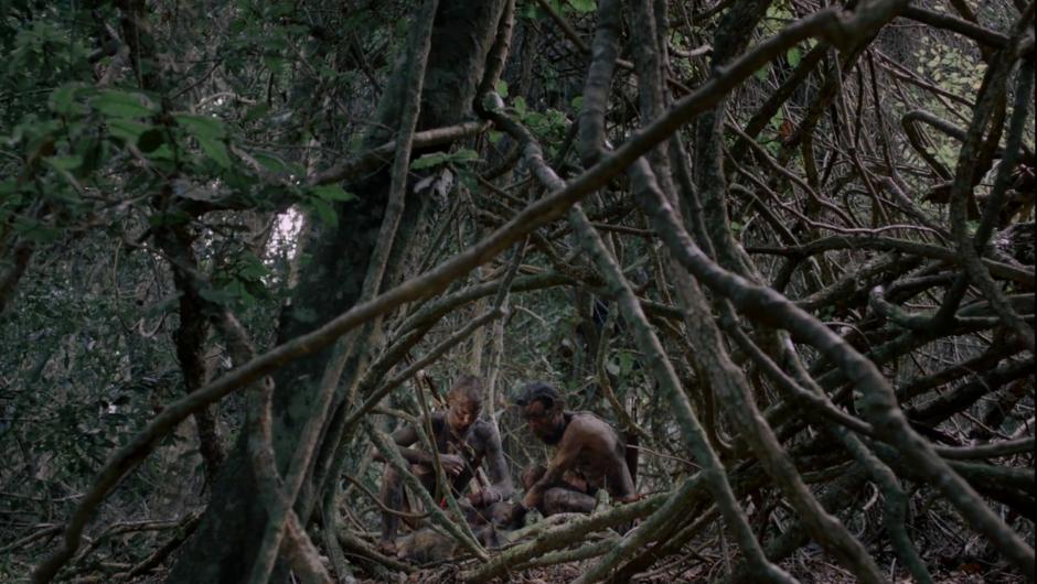 A shot through brambles in South African horror film Gaia (2021)
